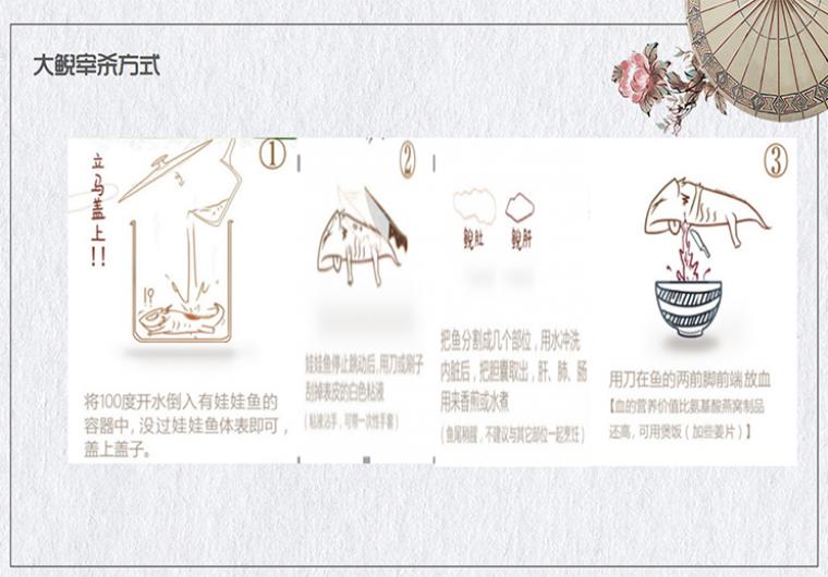 【有机认证-三峡大鲵】鲜活生态娃娃鱼